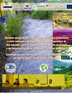 Resumen ejecutivo marco lega 2007